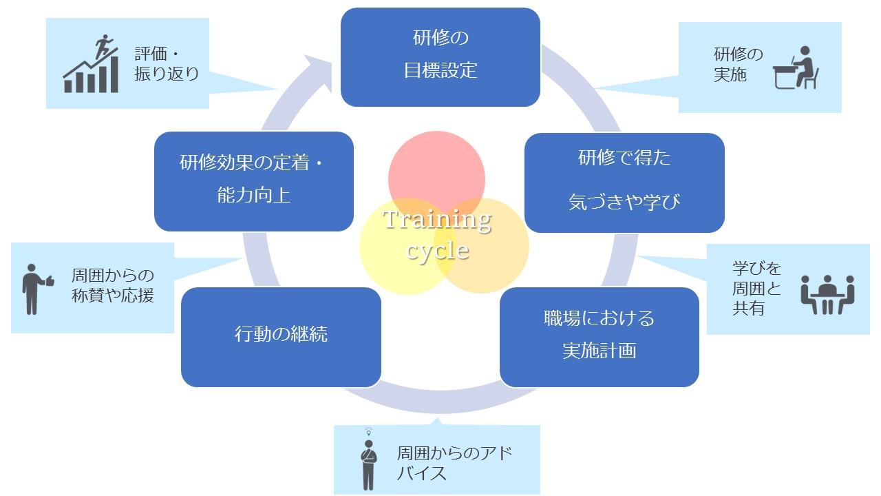 研修サイクル